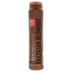 Brazilian Blowout Acai Anti Frizz Shampoo Shampoo