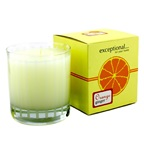 Exceptional Parfums Fragrance Candle - Orange Ginger