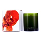 DayNa Decker Botanika Multisensory Candle with Ecowood Wick - Clementine