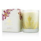 Malie Soy Candle - Plumeria