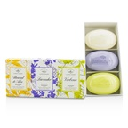 Caswell Massey Signature Soap Set: Almond & Aloe, Lavender, Verbena