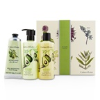 Crabtree & Evelyn Avocado, Olive & Basil Essentials Set: Bath & Shower Gel 250ml + Body Lotion 250ml + Hand Therapy 100g