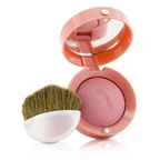 Bourjois Blush - No. 54 Frosted Rose