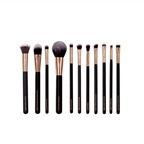 Masey Cosmetics THE MINIMALIST BRUSH SET 11 Brushes
